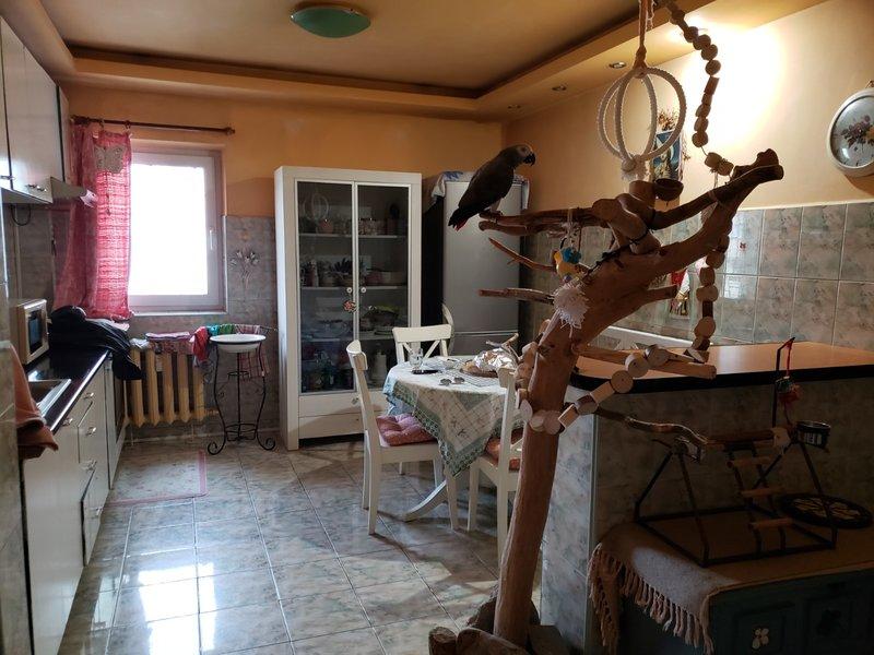 Apartament 3 camere de vanzare Oltenitei - Gradina de Sud